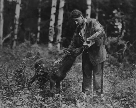 biography belaney archibald stansfeld   grey