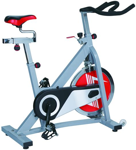 Skyland Indoor Spinning Bike Em 1544 Review | Exercise ...