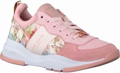 Sneakers Ted Baker Roze Omoda