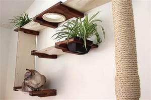 Kletterwand Für Katzen Selber Bauen Die Besten 17 Ideen Zu Catwalk