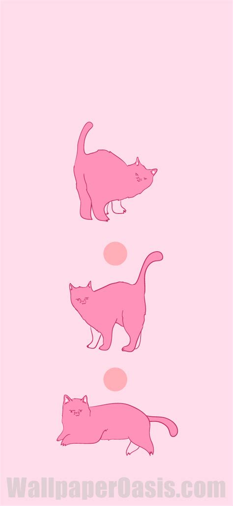 free pink cat iphone wallpaper this design is available
