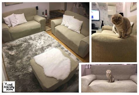 Stains And Fur On Leather Sofas Cat Friendly Sofa