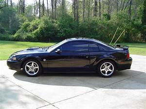 2004 Mustang Parts & Accessories | AmericanMuscle.com - Free Shipping!