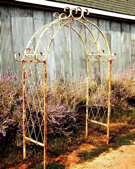 awesome idea metal garden trellis designs crib wall