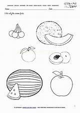 Fruits Worksheets Kindergarten Coloring Worksheet Fruit Printable Viatico sketch template