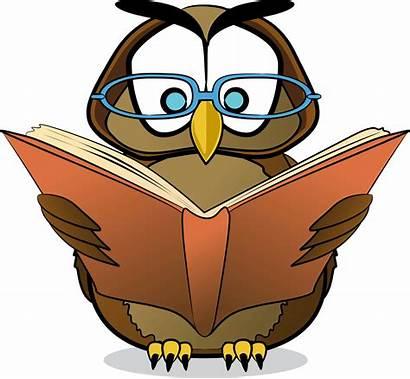 Reading Clipart Books Library Cartoon Clip Owl