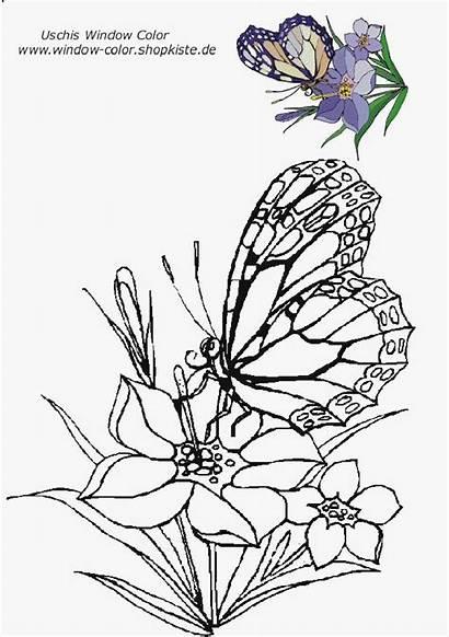 Vorlagen Blumen Window Ideen Besten Coloring Ausmalen