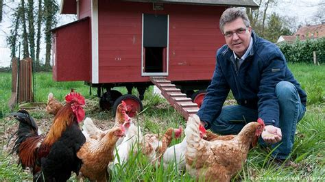 Rent A Huhn Berlin by The Of Renting Chickens In Germany Germany News And