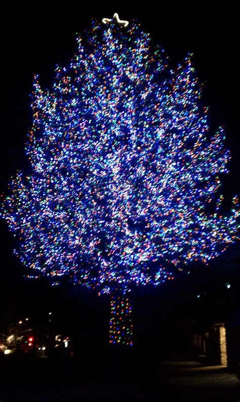 outdoor decor ideas  christmas lights