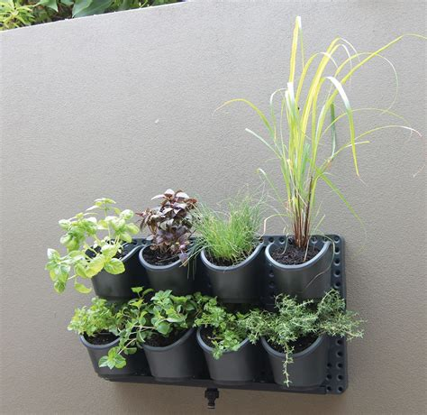 vertical herb garden bunnings google search vertical