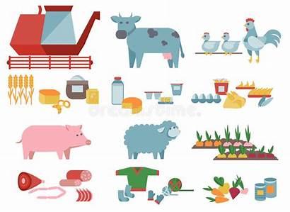 Production Agriculture Farm Produce Vector Harvester