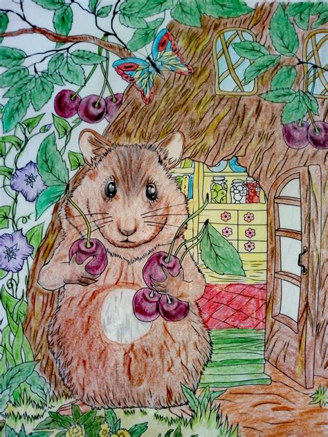 Hamsters are rodents (order rodentia) belonging to the subfamily cricetinae, which contains 19 species classified in seven genera. Beautiful hamster colored by Susan Zurstrassen | Colorful art, Hamster, Art