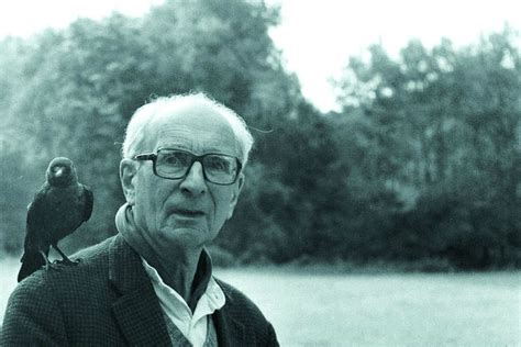 L Strauss by Claude L 233 Vi Strauss R 233 V 233 L 233 Dans Une Quot Biographie Japonaise