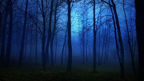 Dark,download Hd Wallpapers, Beautiful Nature, Landscape
