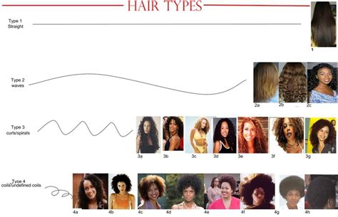 Hair Types by Moisturizing Hair Types 1 2 3 And 4 Vissa Studios