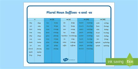 year  spag plural noun suffixes   es teacher