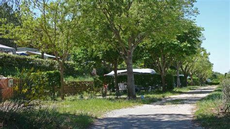 la nature et le calme foto cing les pins les salles sur verdon tripadvisor