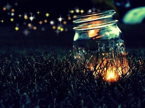 canning lightning bugs in a jar
