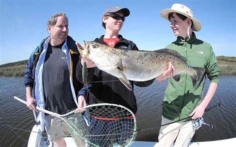 mullet attracting big fish news leader fernandina beach