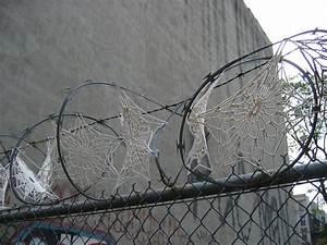 Invasive crochet lace doilies and razor wire colossal for Invasive crochet lace doilies and razor wire