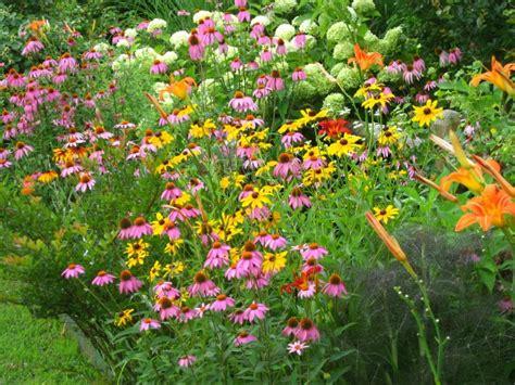 how to attract butterflies butterfly garden design ideas
