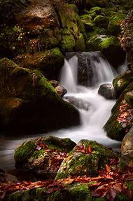 Amazing Beautiful Nature Photography