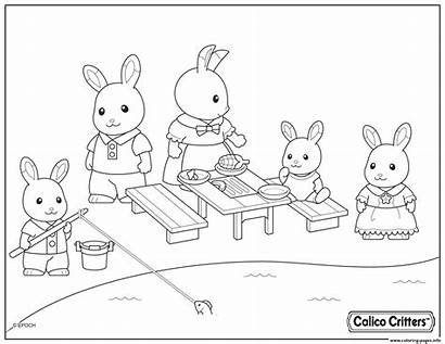 Coloring Critters Calico Pages Picnic Having Fun