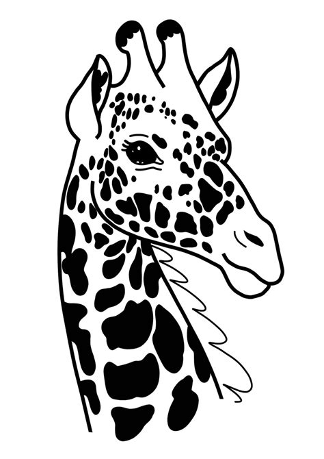 ideas  cricut explore giraffe pocket  shirt