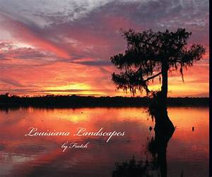 Access Templates 2007 Louisiana Landscapes By Virginia Lee Dickens Blurb Books