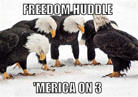 Merica Memes - freedom huddle murica know your meme