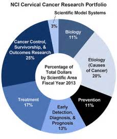Snapshot of Cervical Cancer - National Cancer Institute  Mental Health and Behavior Cancer--Coping with Cancer