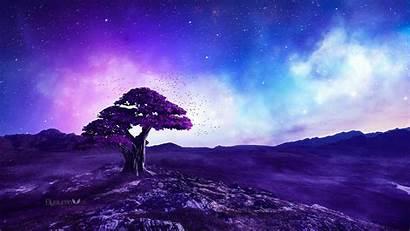 Purple Tree 1440p Wallpapers Resolution Stories Jy