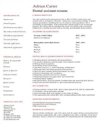 experience resume samples  ms word