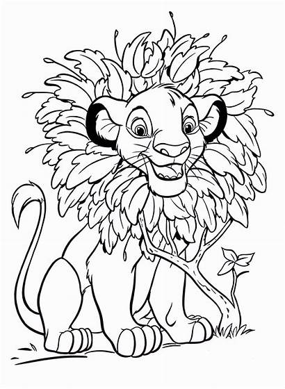 Disney Coloring Pages Walt Simba Characters Fanpop
