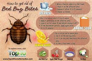 how to get rid of bed bug bites top 10 home remedies With does washing get rid of bed bugs