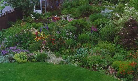 landscaping landscaping ideas for zone 6