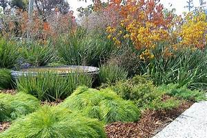 Redrake garden and landscape design for Garden plant design
