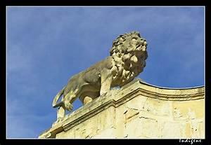 Lion Service Dijon : blog dijon dans galerie ~ Premium-room.com Idées de Décoration