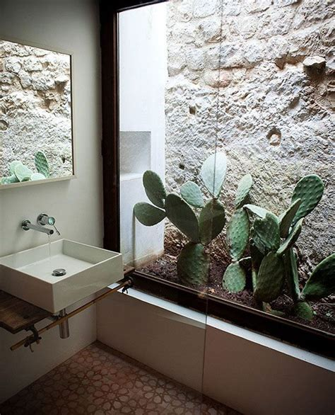 indoor cactus bathroom ideas