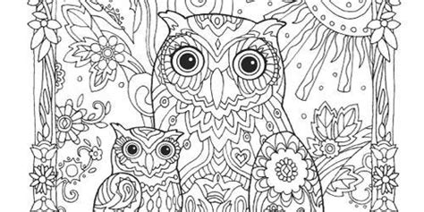animal coloring pages  adults owl bird lions