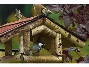 Vogelhaus Bauen Mit Kindern Anleitung : ein vogelhaus mit kindern selbst bauen ~ Watch28wear.com Haus und Dekorationen