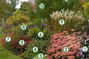 Plantes Vivaces Pour Massif : massif de vivaces l 39 automne en majest sc nes de jardins ~ Premium-room.com Idées de Décoration