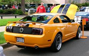 S197 Mustangs...Anybody Have Black Taillight Trim?? - Page 2 - Ford Mustang Forum