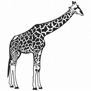 Black & white Giraffe with Detail Body Print - Vector download