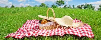 vegan gift baskets farewell picnic 2015 dining
