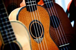 The Ultimate Guide To Ukulele Strings  For Beginners
