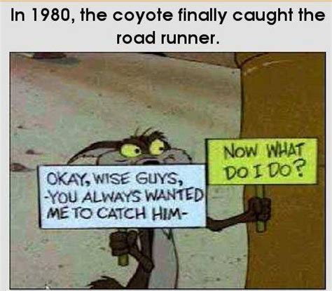 coyote road runner
