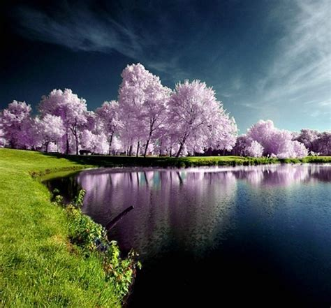 Most Beautiful Nature Photo  Full Dose