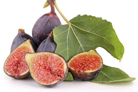 comment cuisiner les figues tout sur la figue la choisir la cuisiner la conserver