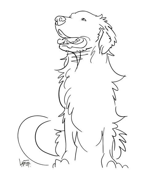 interesting  drawing  dog  images dog